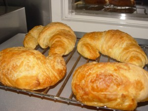 Fresh Baked on Premisis Croissant